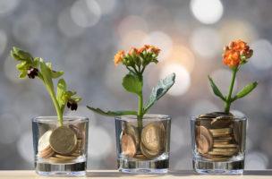 Blümchen brauchen was zum Gedeihen: Mit der Einzahlung in die 3. Säule geniessen Sie Steuervorteile. Foto: Getty Images