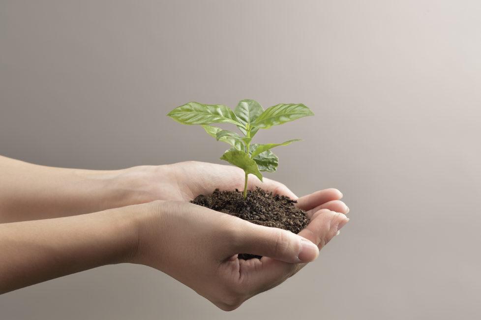 Gutes Gewissen: Nachhaltige Fonds bieten keinen Schutz vor Verlusten. Foto: Getty Images