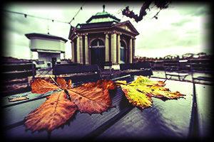 Muenster Plattform Plaefe Herbst