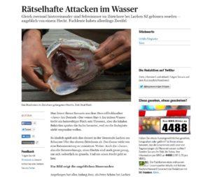 Der Hecht (Symbolbild). Quelle: tagesanzeiger.ch