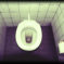 Der grosse Toiletten-Test