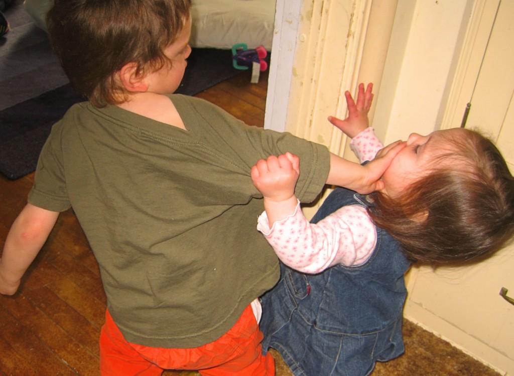 Unter Geschwistern kann es besonders heftig krachen: Foto: Sharon Mollerus (Flickr)
