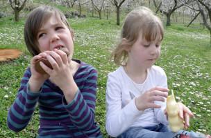 Les petite Fanny et Margot mangent les  lapins de Paques trouves dans les pres le dimanche de 13 avril 2009 lors de Fetes de Paques a Salins en Valais. (KEYSTONE/Olivier Maire)