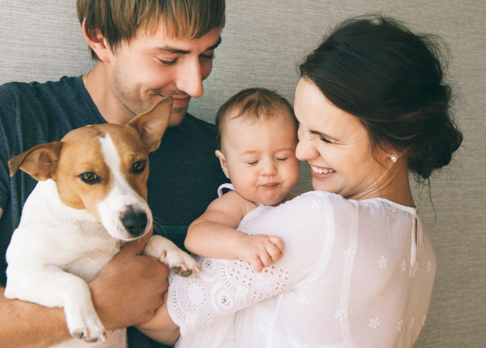 Hund schwanger ich von hilfe bin meinem Kann mein