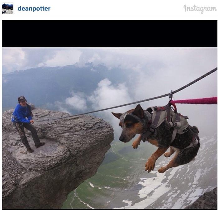 """Hündin Whisper wird am Eiger von der Nordwestwand zum """"Pilz"""" transportiert, eine beliebte Absprungstelle für Basejumper. (Foto: Dean Potter on Instagram)"""