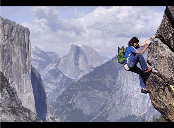 Dean Potter klettert mit Whisper auf dem Rücken anspruchsvolle Routen free solo. Potter findet das gefährlicher als Basejumpen. (Foto: Dean Potter on Instagram)