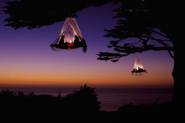 Sleeping-on-tree-style