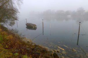 Büren an der Aare, schöne Halbnebelstimmung. Am Nidau-Büren-Kanal geht es aus dem Ort.