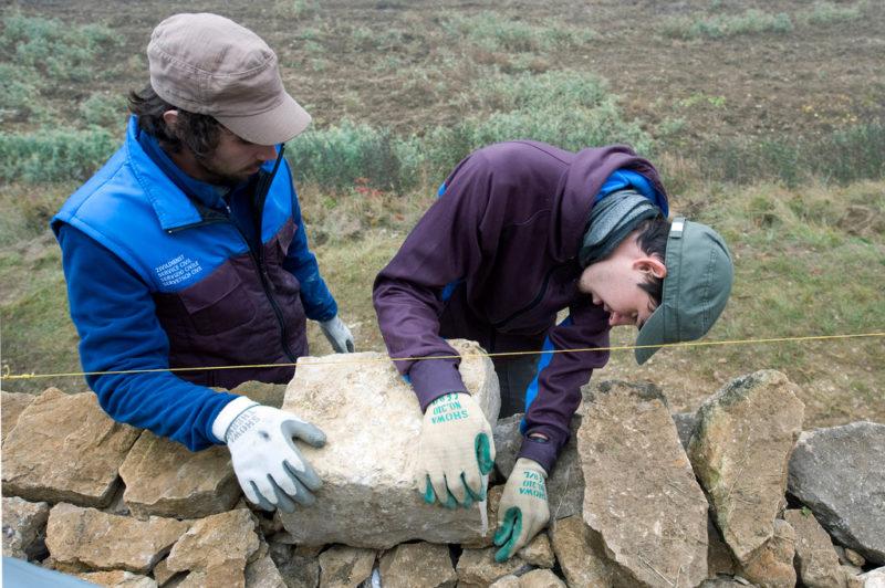Zivildienst soll keine Strafe sein: Zwei junge Wehrpflichtige arbeiten an einer Trockenmauer bei Brugg. Foto: Peter Schneider (Keystone)