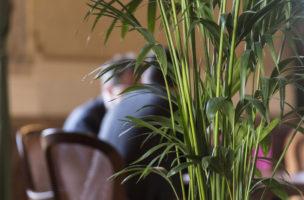 Diskussion hinter einer Zierpalme in der Wandelhalle des Nationalrats. Foto: Alessandro della Valle (Keystone)