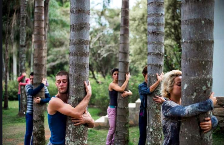 Das Glück der Koexistenz mit der Natur: Performance in Paz' Kunstoase. Fotos: Inhotim