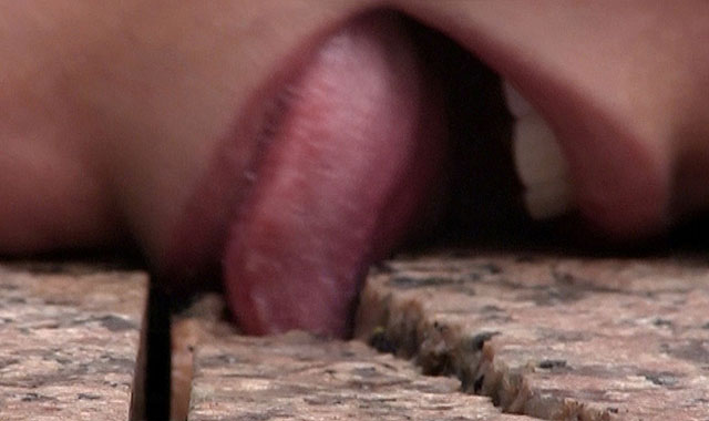 Porny Days: Kunst will mit Pornografie ins Bett - aber Pornogrfie hat grad Migraine. (Bild: Porny Days)