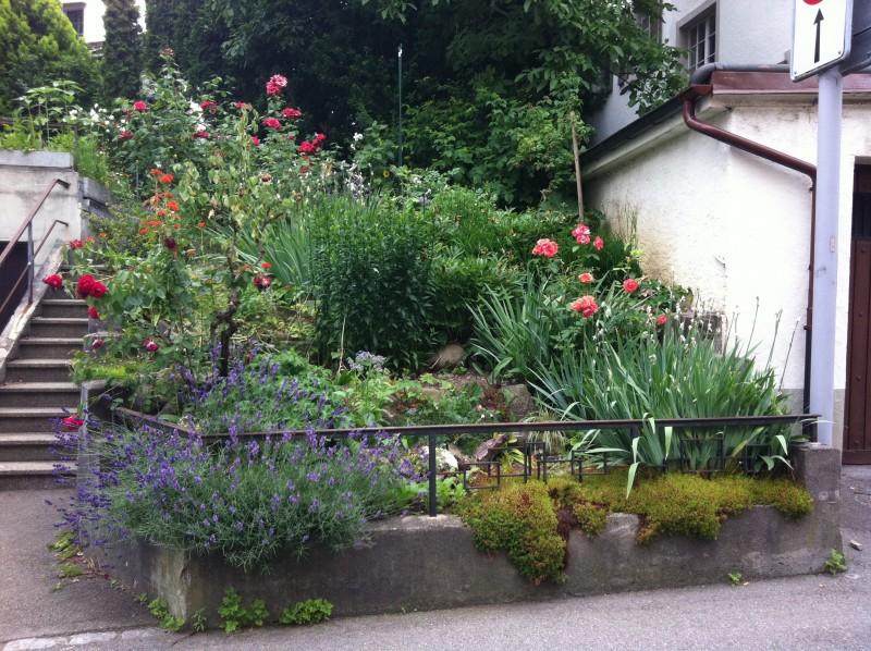 Wunderschone Schweizer Garten Sweet Home