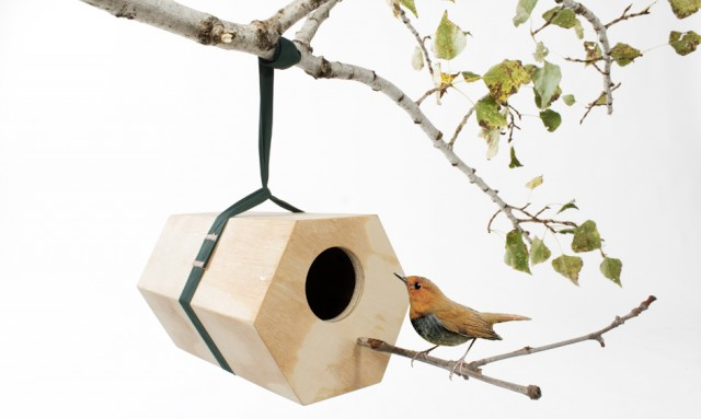neighbirds utoopia