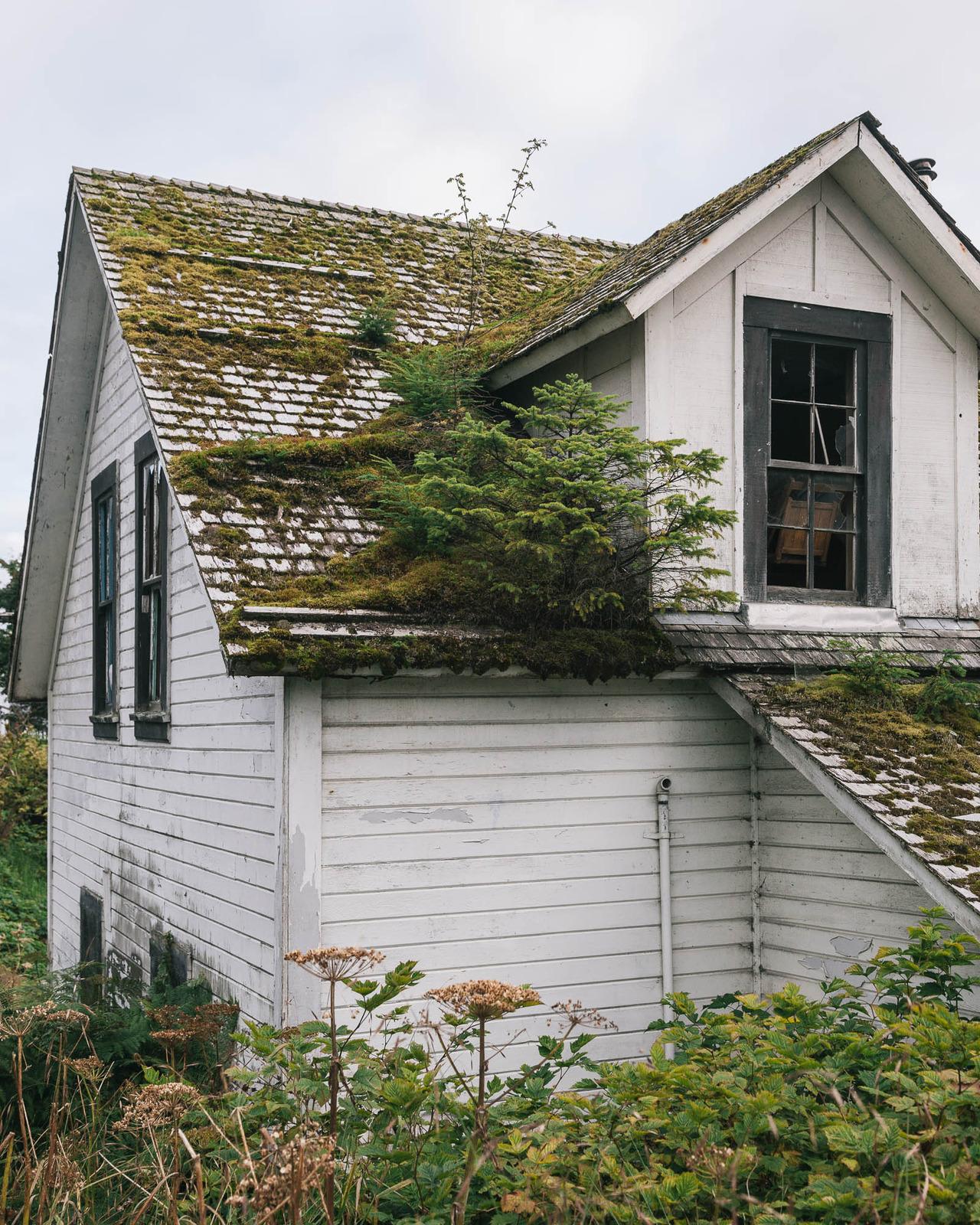 Kleine paradiese auf dem dach sweet home for Ch homes