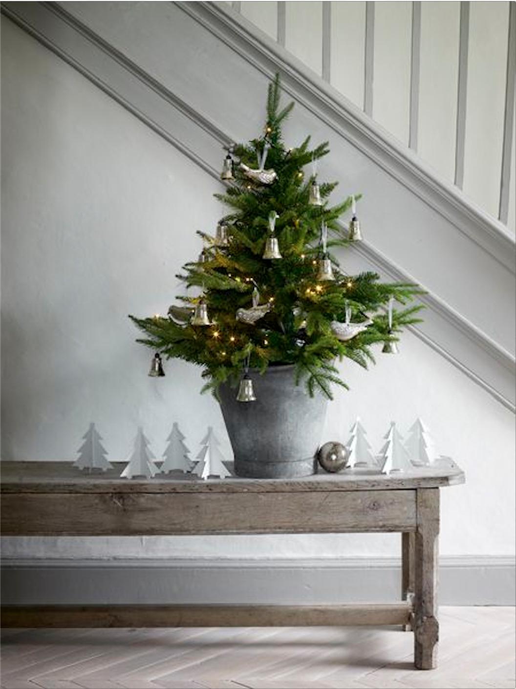 Weihnachtsbaum Im Topf Geschmückt.Die 15 Schönsten Weihnachtsbäume Sweet Home