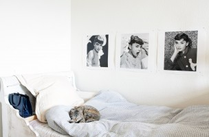 Sweet Home bei Conny Pfister; Contra-Punkt; Copyright Rita Palanikumar