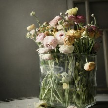 Fokusdamnit-Blumen-2-220x220