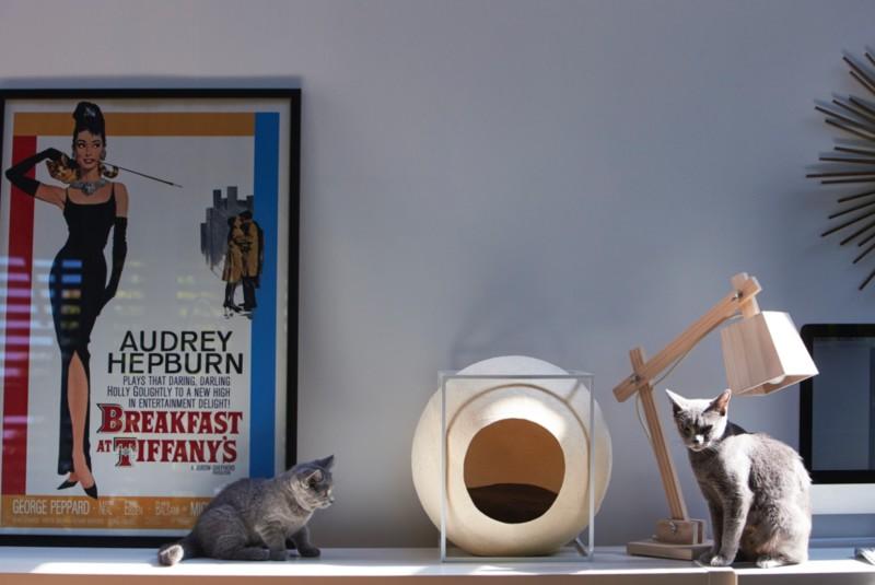 Alles Möbel Für Die Katz Sweet Home
