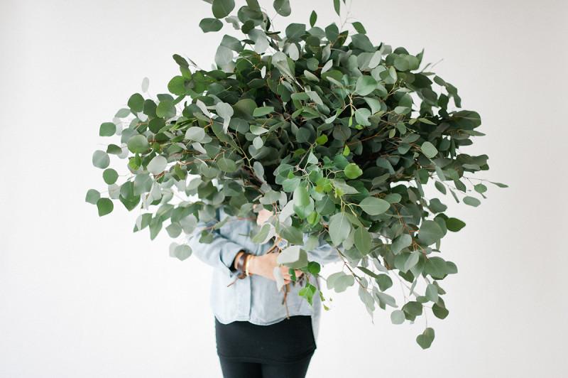 Eukalyptus Im Trend Sweet Home