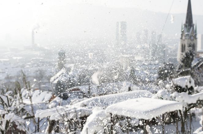 View from the Kaeferberg onto Zurich, in Switzerland, on December 31, 2014. (KEYSTONE/Christian Beutler)  Blick vom Kaeferberg auf die Stadt Zuerich, am 31. Dezember 2014. (KEYSTONE/Christian Beutler)