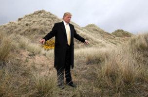 Der tragische Trump