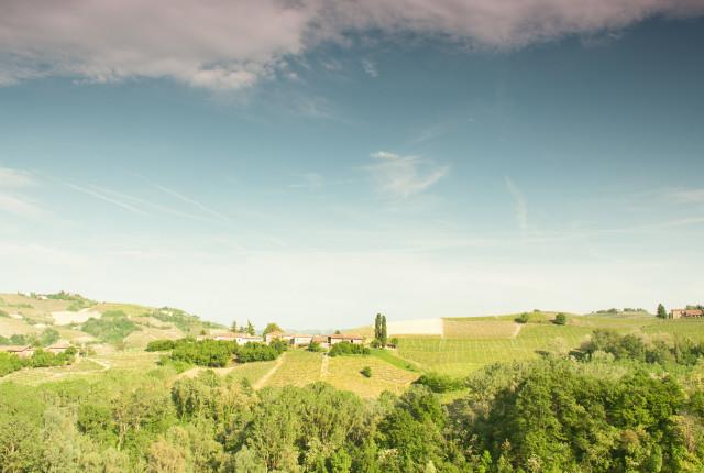 Morandinas Moscato-Weinberge liegen innerhalb der klassischen Anbauzone im Piemont.