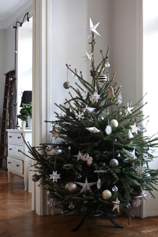 Weihnachtsbaum Im Topf Geschmückt.Weihnachtsbäume Sweet Home