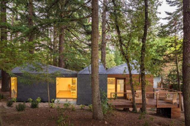 Umweltfreundliche Ferienh User Im Wald Sweet Home