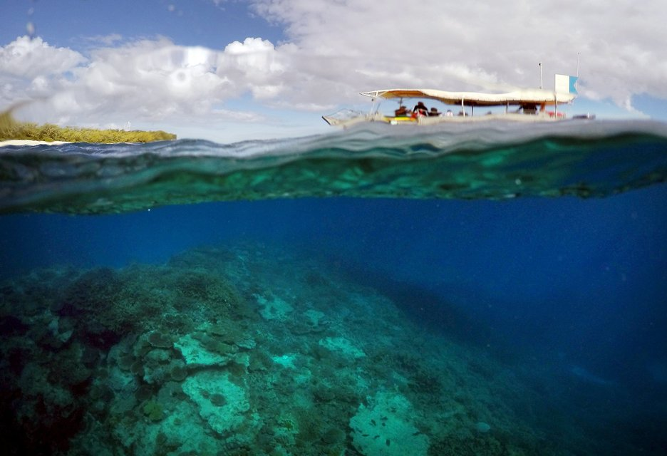 "A boat carrying tourists floats above an area called the 'Coral Gardens' near Lady Elliot Island, north-east of the town of Bundaberg in Queensland, Australia, June 10, 2015. UNESCO World Heritage delegates recently snorkelled on Australia's Great Barrier Reef, thousands of coral reefs, which stretch over 2,000 km off the northeast coast. Surrounded by manta rays, dolphins and reef sharks, their mission was to check the health of the world's largest living ecosystem, which brings in billions of dollars a year in tourism. Some coral has been badly damaged and animal species, including dugong and large green turtles, are threatened. UNESCO will say on Wednesday whether it will place the reef on a list of endangered World Heritage sites, a move the Australian government wants to avoid at all costs, having lobbied hard overseas. Earlier this year, UNESCO said the reef's outlook was ""poor"".  REUTERS/David Gray PICTURE 7 OF 23 FOR WIDER IMAGE STORY ""GREAT BARRIER REEF AT RISK"" SEARCH ""GRAY REEF"" FOR ALL PICTURES"
