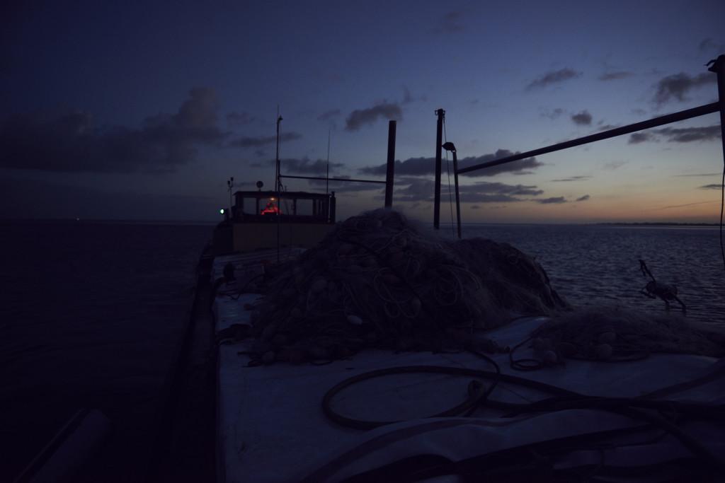 Die Austernfischerin Barbara beim Steuern des Schiffes im Morgengrauen. Austernfischerei auf dem Wattenmeer nah des Hafens von Den Oever in Holland.