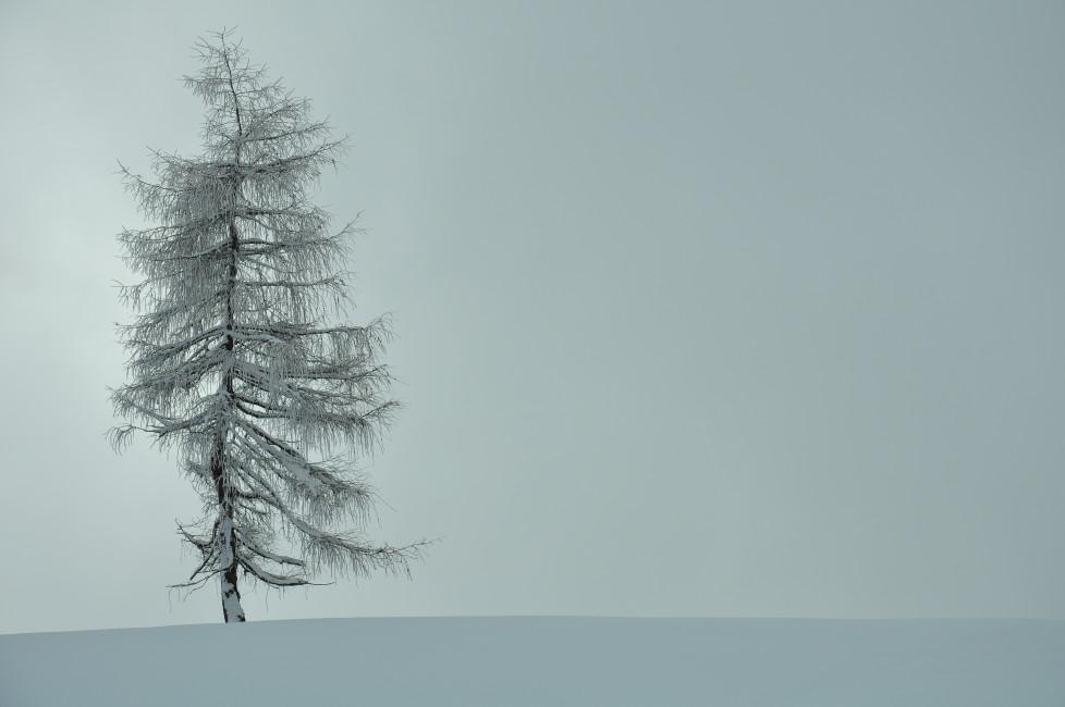"""Die neuen Leserbilder: Die Aufgabe lautete """"Kälte"""". Sebastian Fuhrer AUSGABE 2.12.1015"""