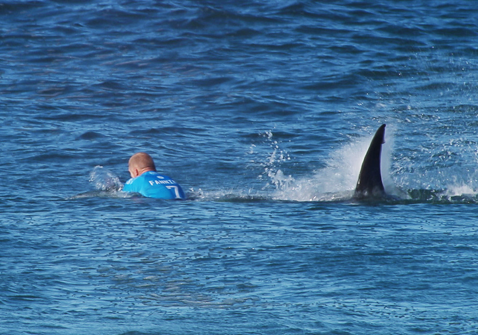 """This handout screengrab made and released on July 19, 2015 by the Worl Surf League (WSL) shows Australian surfer Mick Fanning being attacked by a shark during the Final of the JBay surf Open on Sunday July 19, 2015 in Jeffreys Bay. Mick Fanning, 34, was competing in the final heat of a world tour event at Jeffreys Bay in the country's Eastern Cape province when a looming black fin appeared in the water behind him. He fought back against the shark, escaping from the terrifying scene without injury. AFP PHOTO / WSL ==RESTRICTED TO EDITORIAL USE - MANDATORY CREDIT """"AFP PHOTO / WSL"""" - NO MARKETING - NO ADVERTISING CAMPAIGNS - DISTRIBUTED AS A SERVICE TO CLIENTS== / AFP / WSL / -"""