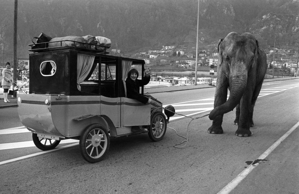 """Clown Dimitri with the cow elephant """"Sabine"""", pictured on November 26, 1973 in Switzerland. (KEYSTONE/Str) Clown Dimitri mit der Elefantenkuh """"Sabine"""" vom Zirkus Knie, aufgenommen am 26. November 1973. (KEYSTONE/Str)"""