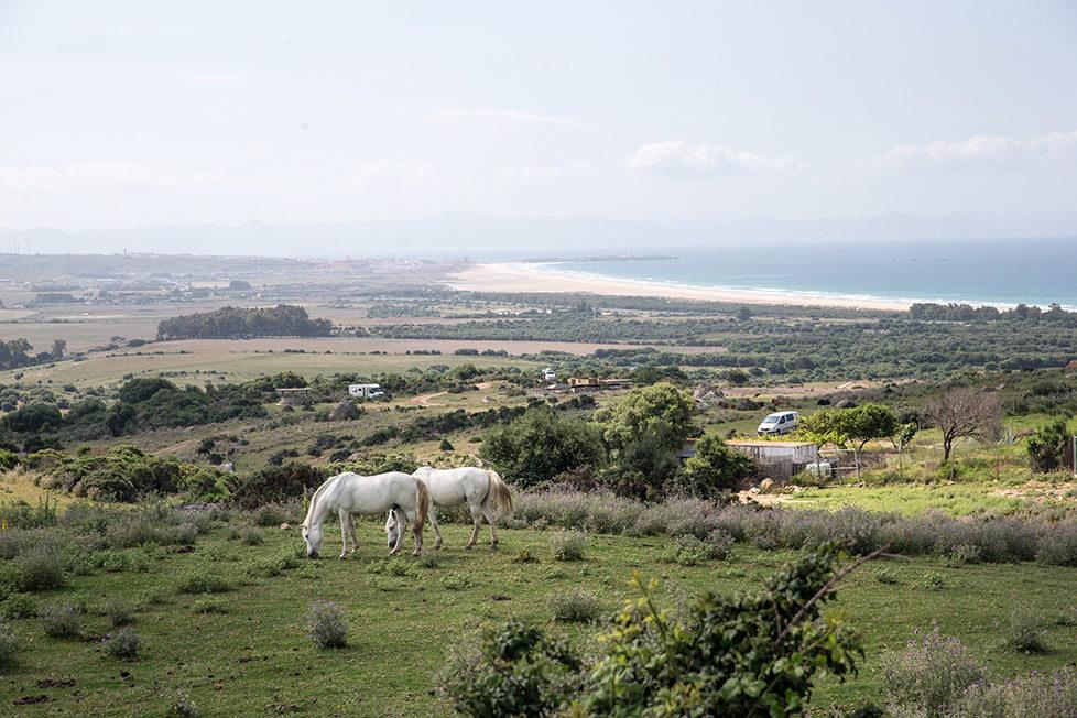 Tarifa südlichster Ort in Spanien Portraits von Schweizer, die sich in Tarifa zu Hause fühlen CHRISTINA WARD betreibt einen Pferdestall am Strand, sie zeigt wo sie mit den Pferden ausreitet MAI 2016 Esther Michel