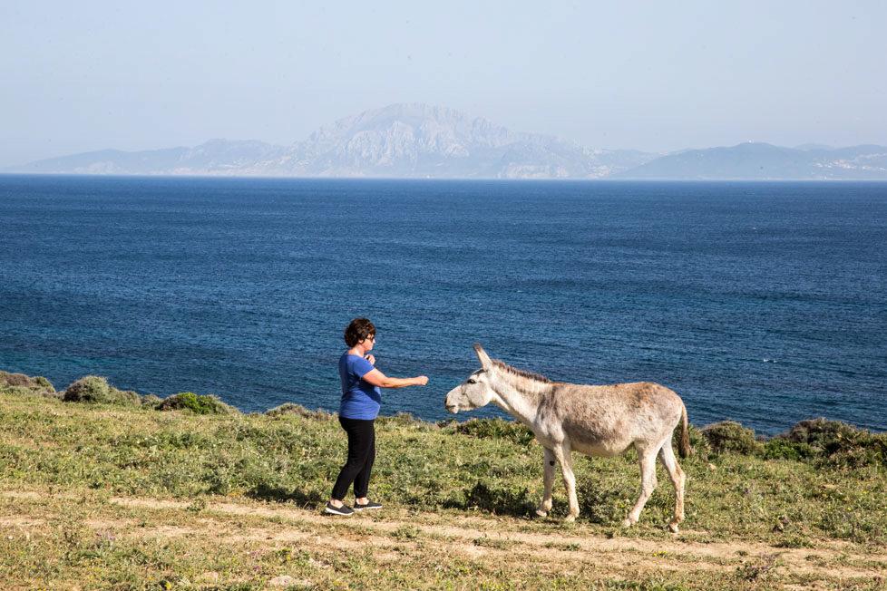 Tarifa südlichster Ort in Spanien Portraits von Schweizer, die sich in Tarifa zu Hause fühlen KATRIN betreibt das HUERTA GRANDE (Hütten) und geht mit ihren Gästen wandern- sie treffen oft auf Esel MAI 2016 Esther Michel