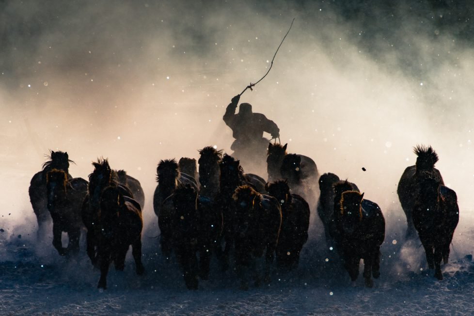 The Winter in Inner Mongolia is very unforgiving. At a freezing temperature of minus twenty and lower with constant breeze of snow from all direction, it was pretty hard to convince myself to get out of the car and take photos. Not until I saw Inner Mongolia horsemen showing off their skills in commanding the steed from a distance, I quickly grab my telephoto lens and capture the moment when one of the horseman charged out from morning mist .