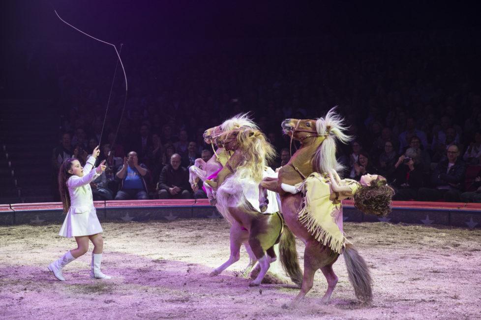 Circus knie 2019